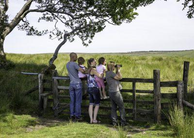 ews-gallery-exmoor-8
